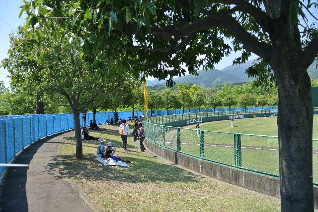 暑い日には、木陰になる場所が絶好の観戦エリアとなります。