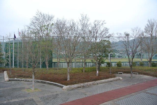 陸上競技場と野球場の間はスペースが広めに取られていて、各種イベントに利用できそう。