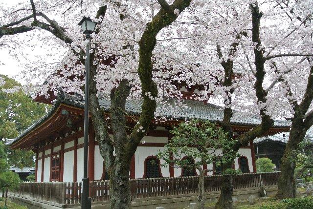 寺伝では開基、足利義兼公の創建となっているが現存の経堂は1407年に関東管領足利満兼により再建されたもの。内部に八角の輪蔵があり、一切経二千巻余(黄檗版)を蔵している。