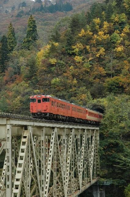 紅葉の季節は、写真を撮るために車で列車を追う人が多く出没します。