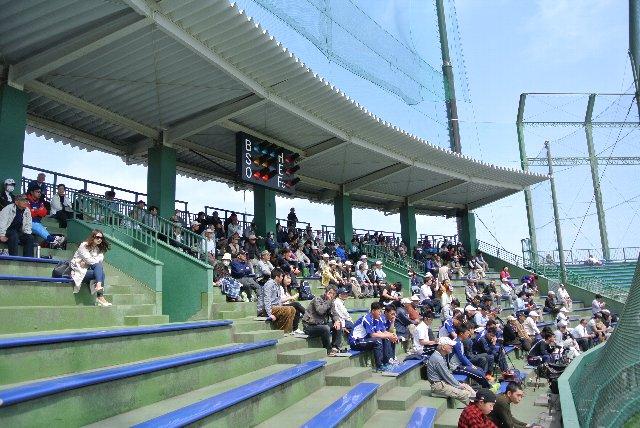 うちが観戦した日も天気が良く、日陰座席争奪戦が起きていました。