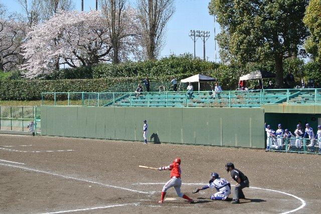 試合風景を撮ったのか、桜の木を撮ったのか(笑)。