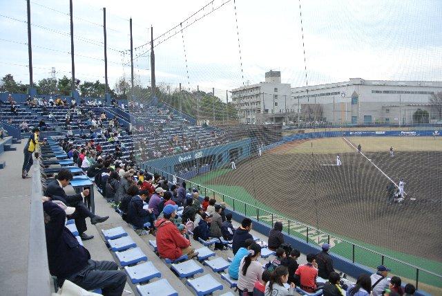 一塁側、三塁側共に特別なシートはありません。