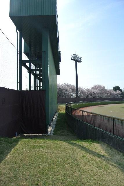 最低限のルールは守れる球場仕様にしませんか?