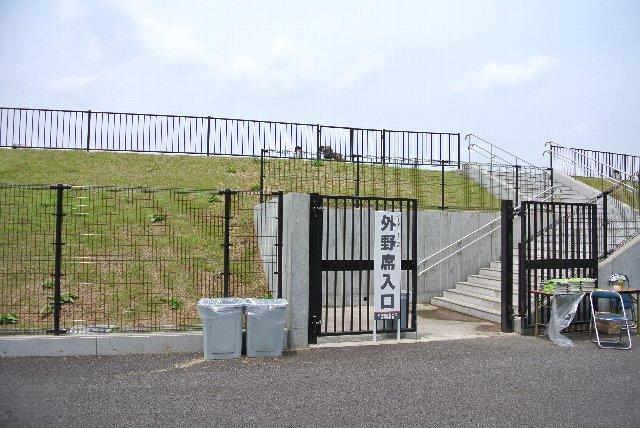 内野芝生席裏手にゲートがある他、外野席にも専用のゲートが設けられていました。
