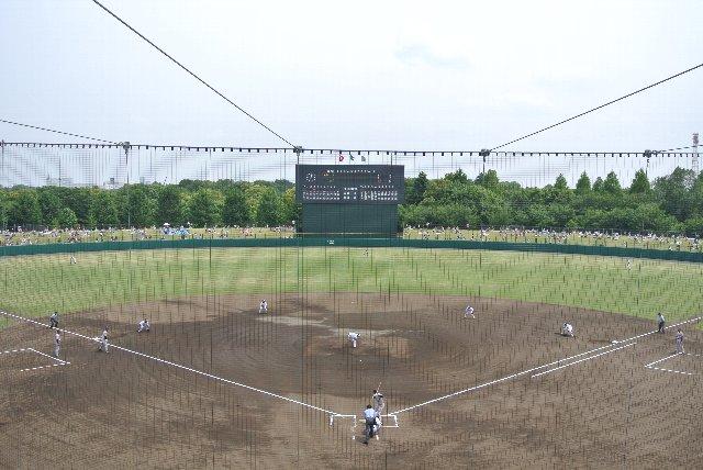 外野席の奥に広がる豊かな森に向かって野球をする感じが良いですね。