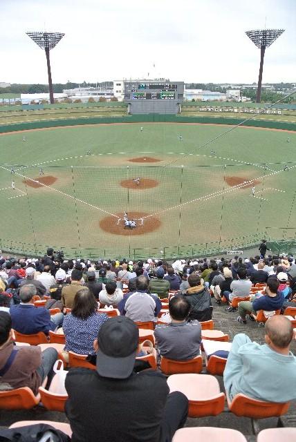 ネット裏/最前列信奉者、この球場にも多数。ここが特等席とじっと同じ場所で観戦する人多数。