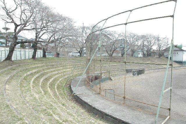 取って付けたようなネットと、その奥に見える簡素なベンチからして、少年野球向けが良いところか。