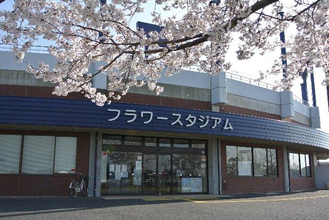 桜が満開のタイミングで、よくぞこの日に開催してくれたという感じ。