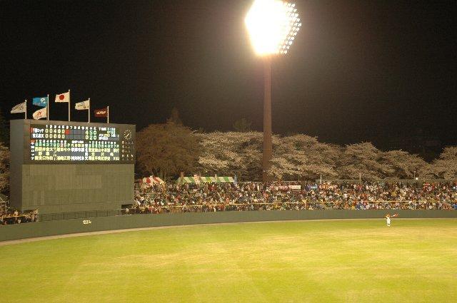 照明灯に照らされ、球場奥の桜回廊が浮かび上がって見える様子が素敵でした。