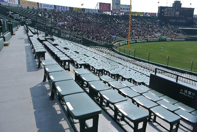 NPB12球団の本拠地球場で、内野スタンドに背もたれの無い個別椅子を採用しているのは甲子園球場のみ。