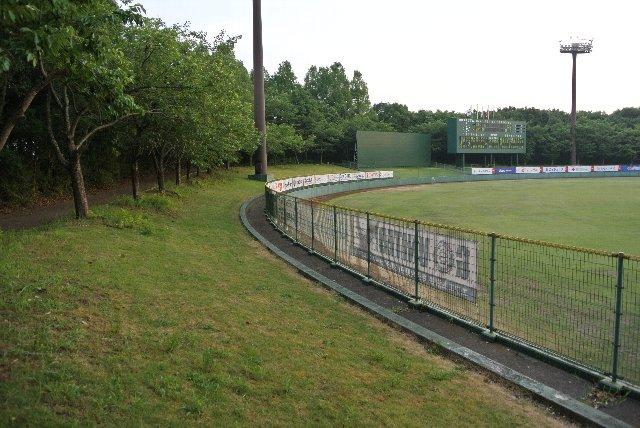 芝生席の上段は通路になっており、奥行きのある外野席。