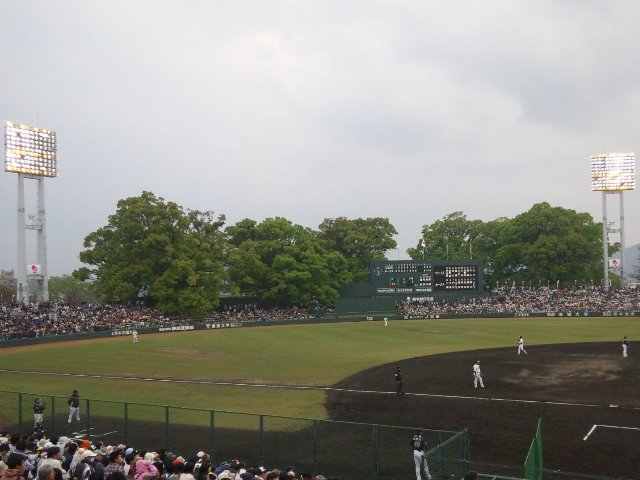 樹齢400年〜1000年のクスノキが群生する森の緑は非常に鮮やか。テレビ中継などでも外野に打球が飛ぶと、気になる光景です。