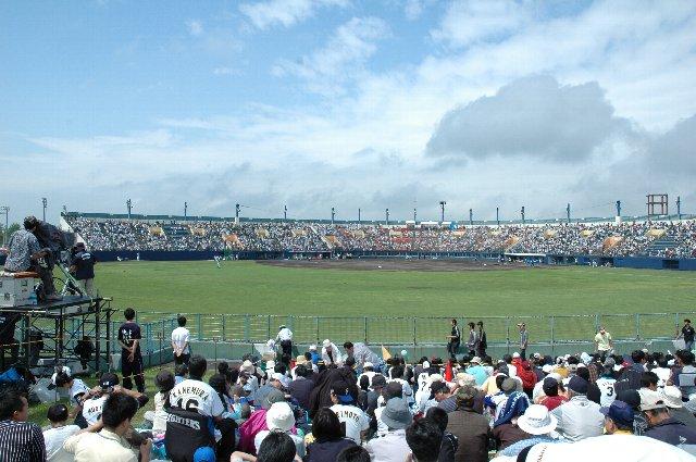 青空の下、絶好の野球観戦日和です。