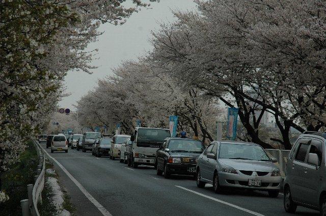渋滞中の堤防道路。