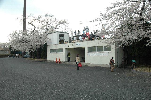 レフトスタンド入口、桜の木が良い感じを出しているが、入口裏手のトイレが強烈な悪臭を放っている。