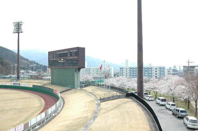 球場に沿って駐車スペースが設けられ、その外周が桜並木となっているのがわかります。