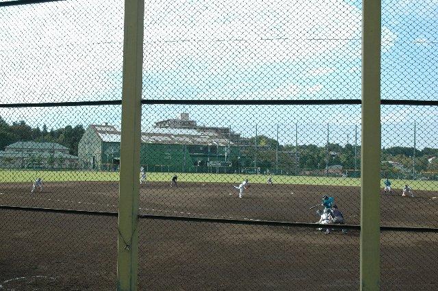 この球場に関しては、何処がベストポジションなんだろって悩んでしまいます。
