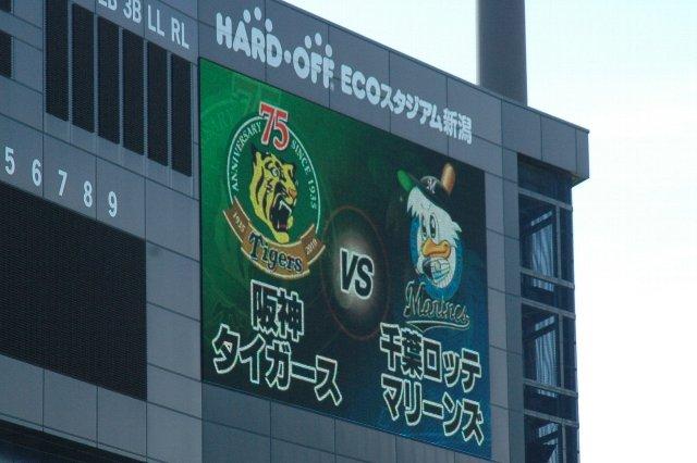 Marinesがこれまで三度出場したファーム日本選手権、相手はいつも阪神なんです。