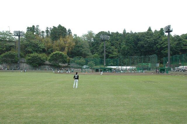 野球観戦は視界を遮るものが無い状況で観戦するに限る。