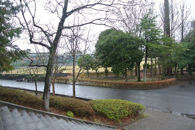 こういった部分からも良く整備された公園であることがうかがえる。