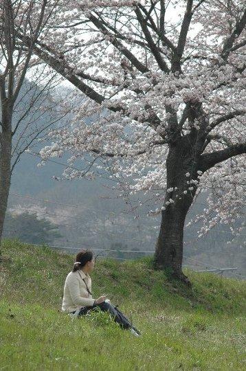 桜の木でたたずむ女性、絵になります。