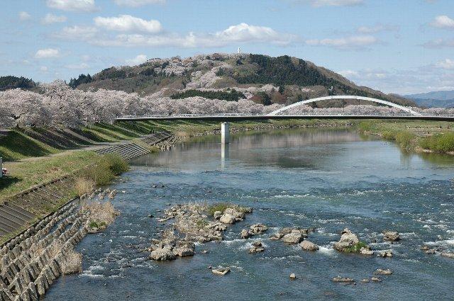 山の上まで桜の帯が続いているのがわかるでしょうか。