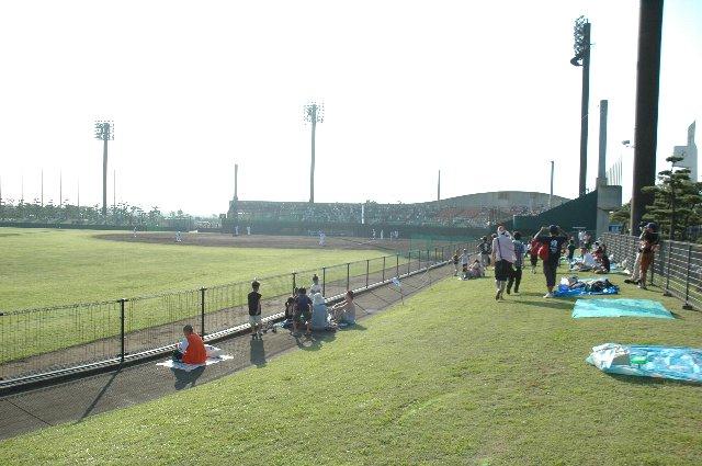 袖ヶ浦の内野芝生席は、グラウンドとを隔てるフェンスが低めに作られているのが特徴。