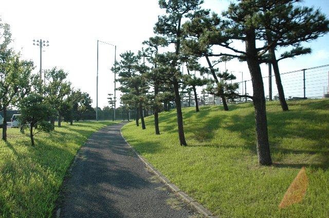 周辺の住宅地から球場の周りを散歩する人が多く見られた。