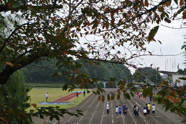 市内の各学校から近いこともあり、陸上競技の練習や大会で良く利用されているようです。