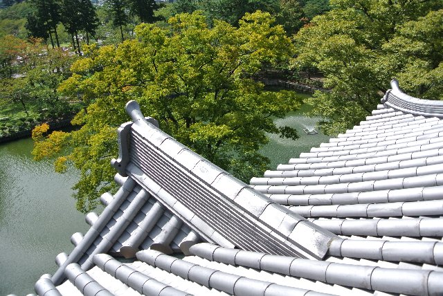 高田城址と言えば、上越随一の桜の名所。一度は桜の季節に訪ねてみたいものです。