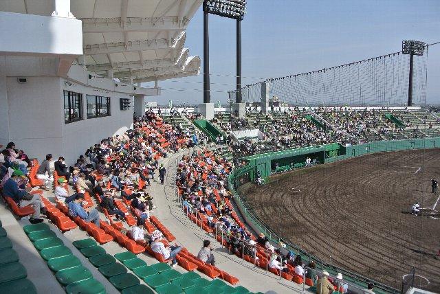 ネット裏の座席はオレンジ色に塗り分けられています。