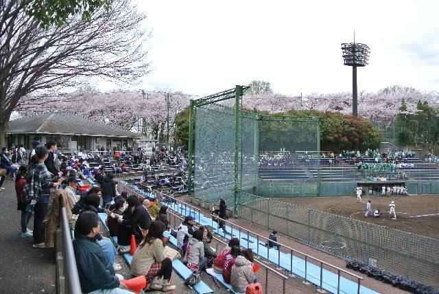 この位置(高さ)が一番試合を観やすいので、試合中、ここに立って試合を観ている人が結構多いですね。