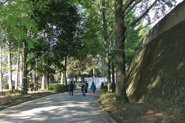 駐車場や県道(雀宮駅方面)から公園に入ると、まずこの散策路にぶつかるはず。