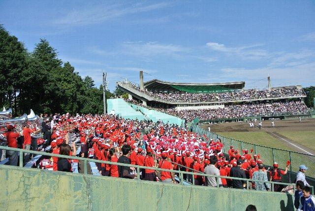 地の利を活かし、組織的な応援という意味では、横浜高校を圧倒していた。