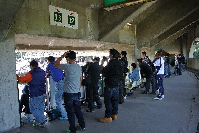 内野スタンドはどこも満席だし、外野席まで行くのは面倒だし、立ち見でも良いやと決めた人達がここに陣取る。