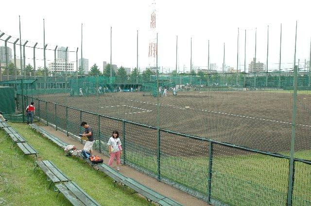ホーム側(一塁側)の観戦スペースから見る球場全景。真ん中付近に居るのはてんむす。