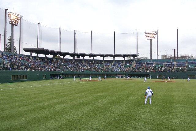 外野席から見る試合風景です。