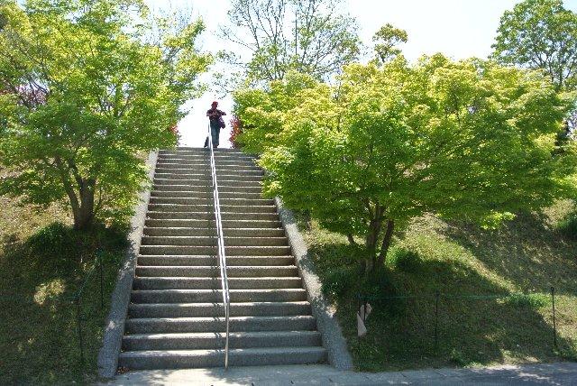 駐車場から長い階段を上がると、グラウンドに出ます。