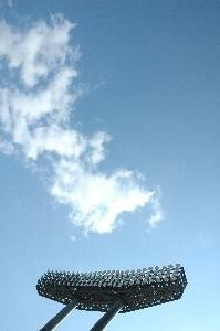 今日は長野でもセーター要らずの暖かな陽気でした。