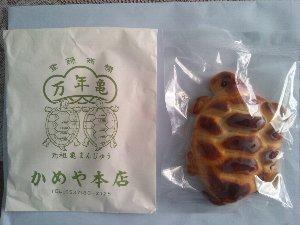 亀の形をした饅頭は全国各地で見掛けますね。最近は川越や日和佐で「美味しい亀」を頂いています。