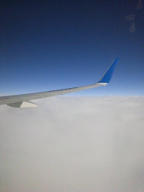 関東は強めの雨が降っていましたが、雲の上に出ればこんな感じ。空の青さが綺麗です。