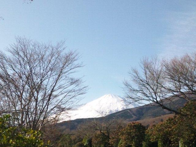 久々に綺麗な青空の下で、美しい富士山を拝めた気がします。