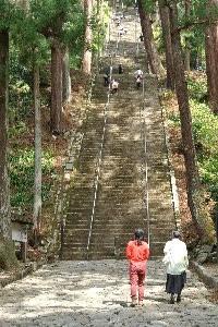 元気に階段を上る子供達を見ながら、大人達は「膝が笑う...」と息を切らしながら山頂を目指します。