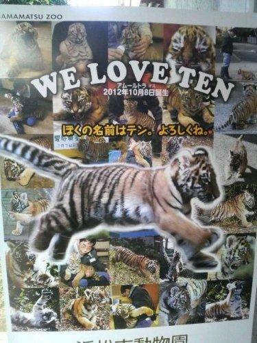 駄目元で、動物園からポスターを譲って頂けないか交渉してみよう。