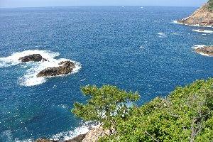 土佐清水から足摺岬に向かう途中にある。展望台から見える海はどこまでも青く、美しい。