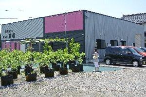 農園Cafeを名乗るだけあって、おおよそカフェなどが有り得ない場所にお店は建っている。