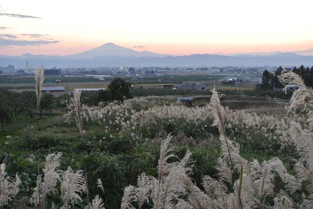 前回、横手を訪ねたときは曇天で鳥海山が見れなかった。思わぬ機会にその勇姿を見ることになった。