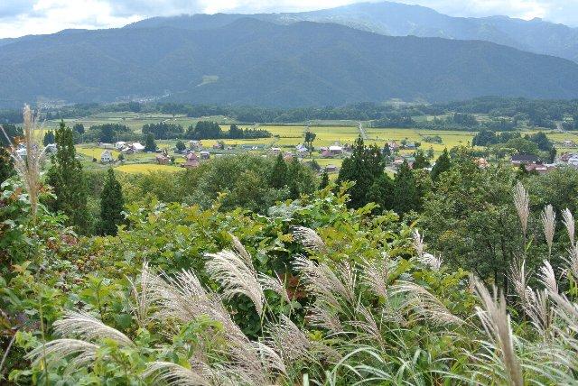 県道95号線、季節毎の田園風景を堪能できる素晴らしい道でした。