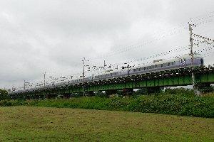 鉄橋の下は虫だらけ。少し立っただけで、沢山の虫がたかってくる。